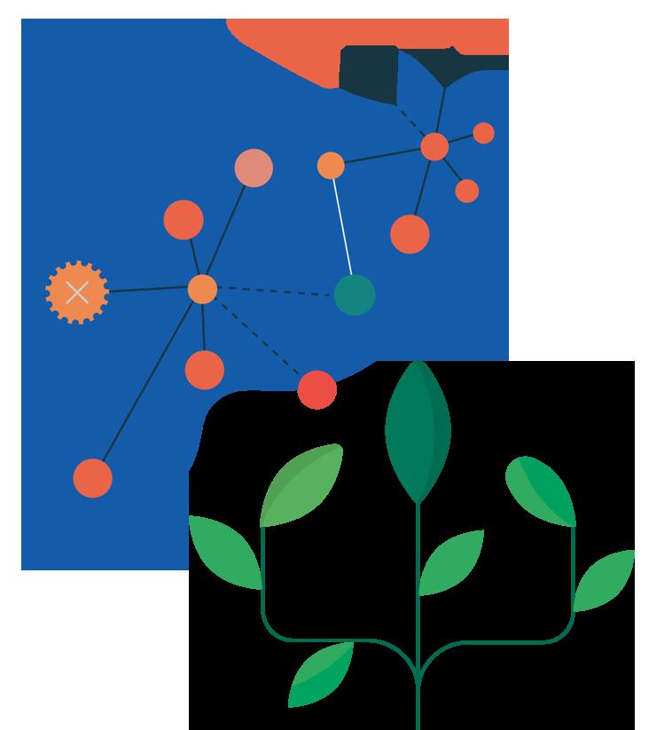cell bioassay
