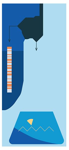 LUMI-CELL for Estrogen (ERα activity) testing